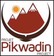 Pikwadin logo
